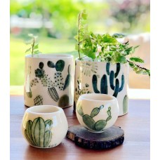 Cactus Serie Pot Set - SK-19SKTRP010